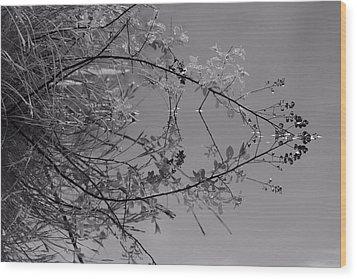Natural Reflection Wood Print by Karol Livote