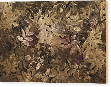Naturaleaves - Gla02f Wood Print by Variance Collections