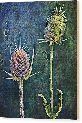Nature Abstract 12 Wood Print by Maria Huntley
