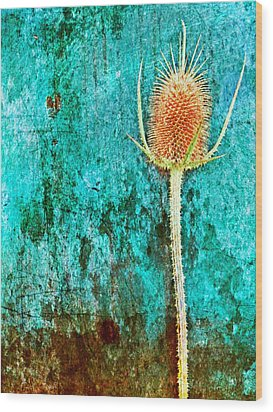 Wood Print featuring the digital art Nature Abstract 13 by Maria Huntley