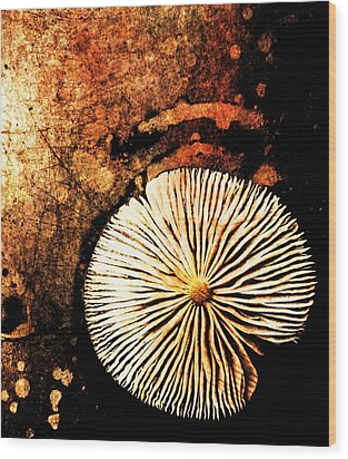Wood Print featuring the digital art Nature Abstract 14 by Maria Huntley