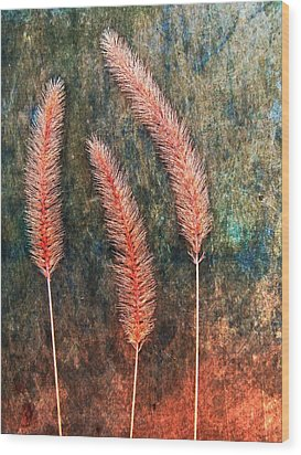 Wood Print featuring the digital art Nature Abstract 15 by Maria Huntley