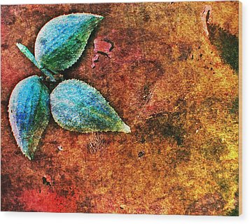 Nature Abstract 17 Wood Print by Maria Huntley