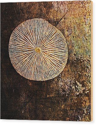 Wood Print featuring the digital art Nature Abstract 22 by Maria Huntley