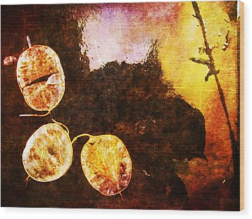 Wood Print featuring the digital art Nature Abstract 6 by Maria Huntley