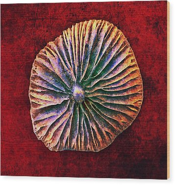 Wood Print featuring the digital art Nature Abstract 7 by Maria Huntley