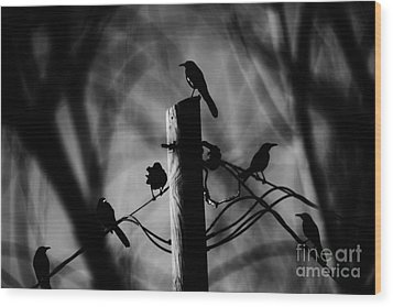 Wood Print featuring the photograph Nature In The Slums by Jessica Shelton