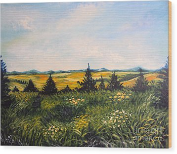 Nature Landscape Sky Mountains Pines Grass And Flowers Wood Print by Drinka Mercep