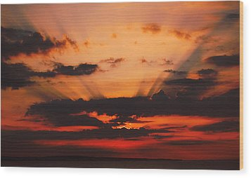 Nature Light Show Wood Print by Tony Reddington