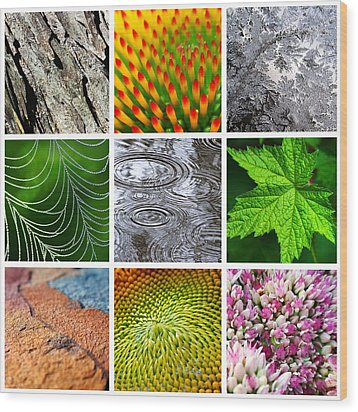 Nature Patterns And Textures Square Collage Wood Print by Christina Rollo