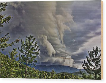 Nature Showing Off Wood Print by Tom Culver
