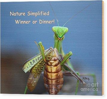 Nature Simplified Wood Print