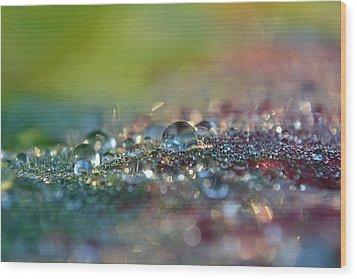 Nature Sparkles Wood Print by Melanie Moraga