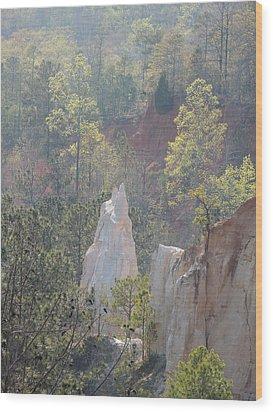 Nature Struggles Wood Print by Kim Pate