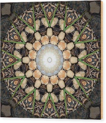 Nature Vortex Mandala #1 Wood Print by Beth Sawickie