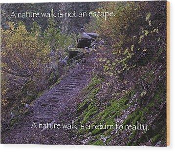 Nature Walk Wood Print by Tom Trimbath