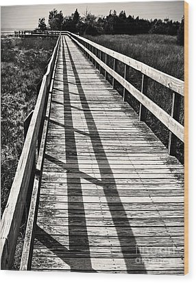 Wood Print featuring the photograph Nature Walk by Vicki DeVico