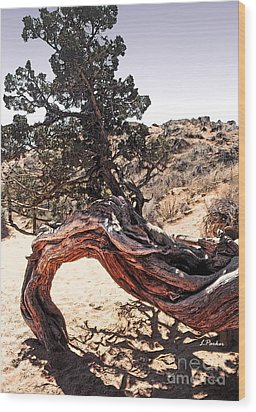 Nature's Abstract Wood Print by Linda  Parker