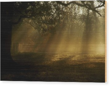 Natures Alarm Clock  Wood Print by John Chivers
