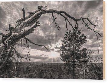 Natures Arch Wood Print by Debra and Dave Vanderlaan