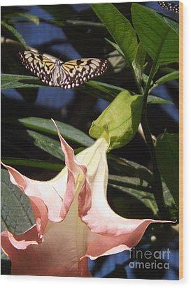Nature's Beauty Wood Print by Brigitte Emme