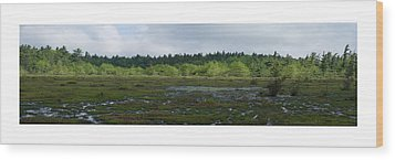 Wood Print featuring the photograph Nature's Bog Lan 431 by G L Sarti