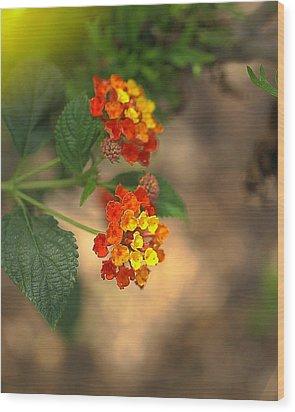 Nature's Bouquet Wood Print