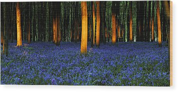Natures Carpet  Wood Print