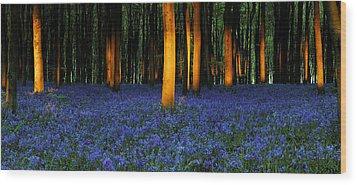 Natures Carpet  Wood Print by John Chivers