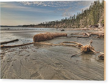 Natures Garbage Wood Print by James Wheeler