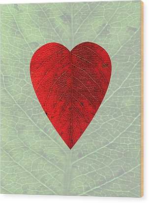 Nature's Heart Wood Print by Deborah Smith