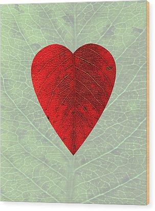 Nature's Heart Wood Print