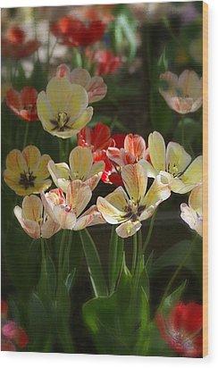 Natures Joy Wood Print by Randy Pollard