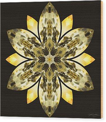 Nature's Mandala 57 Wood Print by Derek Gedney