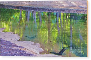 Natures Mirror Wood Print by Michele Penner