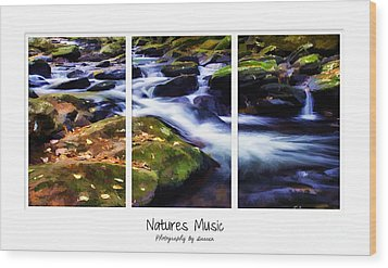 Natures Music Wood Print by Darren Fisher