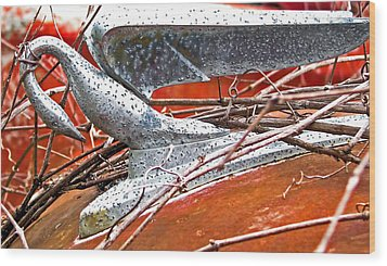Natures Noose Wood Print