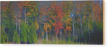 Nature's Paint Brush Wood Print by Gary Hall