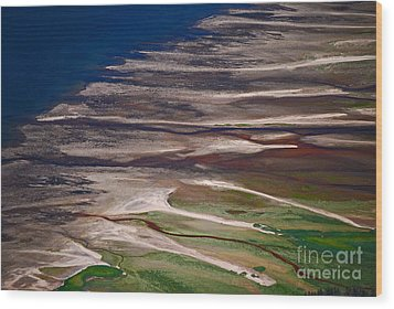 Wood Print featuring the photograph Nature's Palette by Cynthia Lagoudakis