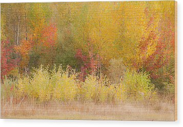 Wood Print featuring the photograph Nature's Palette by Paul Miller
