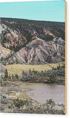 Nature's Palette Wood Print by Sandi Mikuse