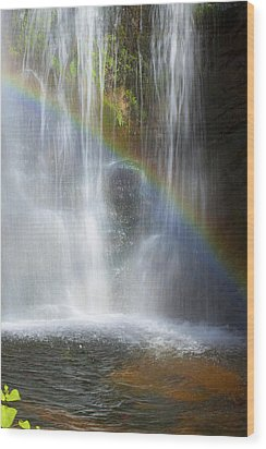 Wood Print featuring the photograph Natures Rainbow Falls by Jerry Cowart
