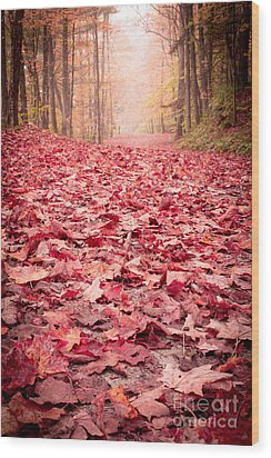 Nature's Red Carpet Revisited Wood Print by Edward Fielding