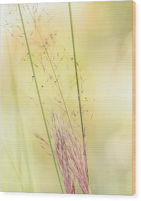 Natures Serenity Wood Print by Camille Lopez