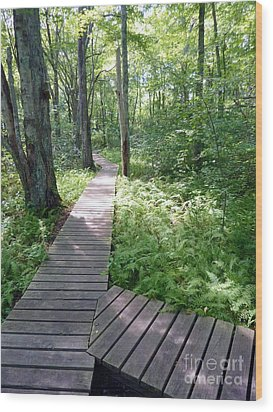 Wood Print featuring the photograph Nature's Walkway by Mary Lou Chmura