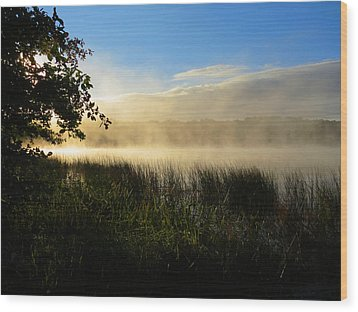 Wood Print featuring the photograph Nature's Way by Dianne Cowen