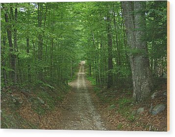 Nature's Way At James L. Goodwin State Forest  Wood Print by Neal Eslinger