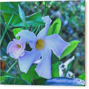 Flower 14 Wood Print