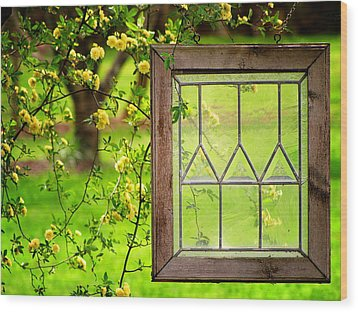 Wood Print featuring the photograph Nature's Window by Greg Simmons