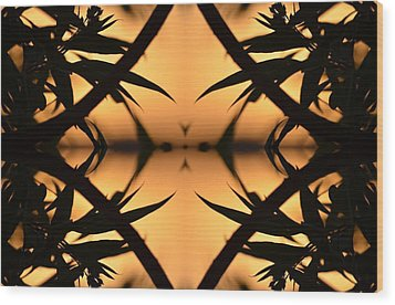 Nature's Window Of Opportunity Wood Print